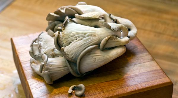 wild-mushroom-risotto-1